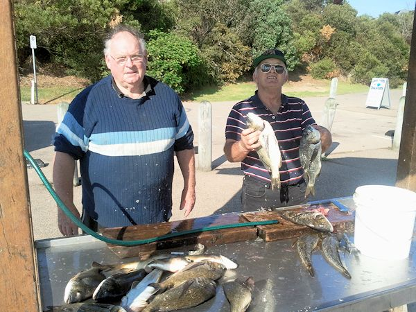 Flathead and Bream at Lake Tyers Beach - Ray and Peter