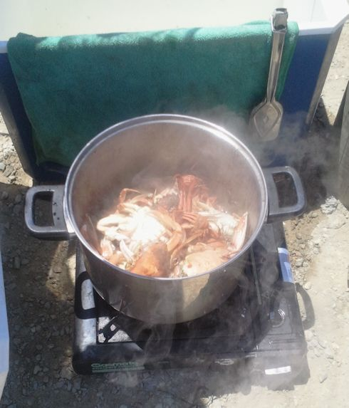 Cooking crabs at Lakes Entrance