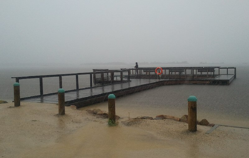 Fisher in the Big Wet at Mallacoota