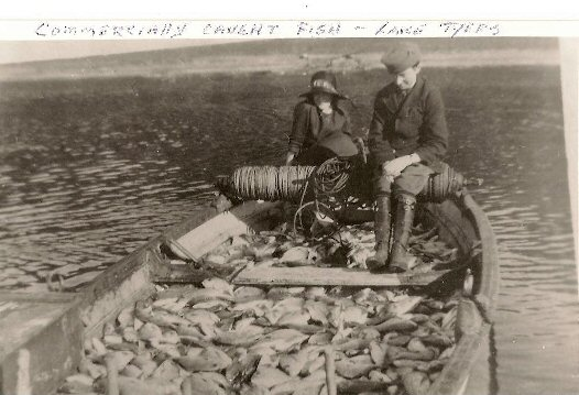Commercial Fishing Lake Tyers