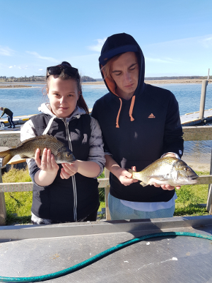 Early catches of Bream