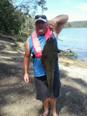 No Fuss Guss with big Flathead